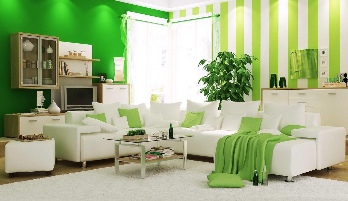 Цвет Салатовый Фото
