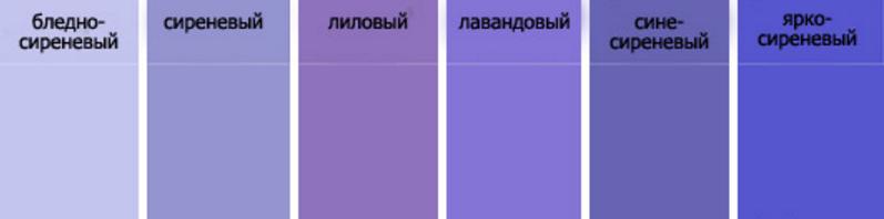 Как это лиловый цвет