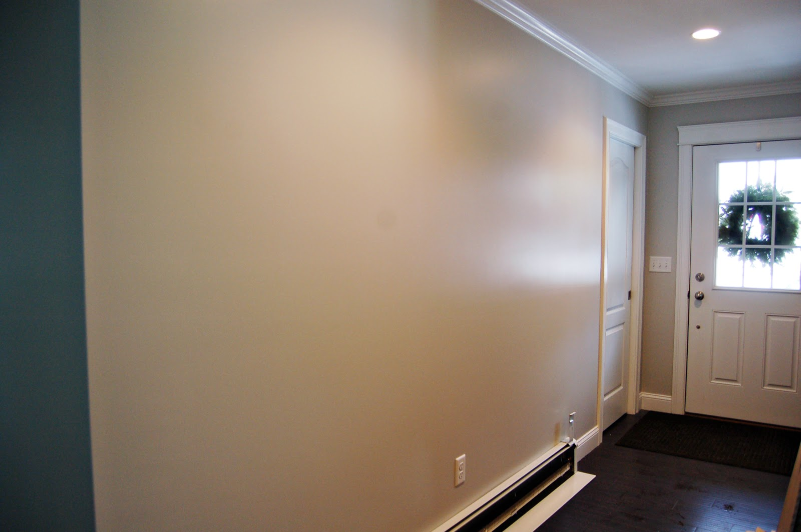 алёнка глянцевая краска для стен фото пауков-скакунов восемь глаз