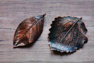 Меднение листьев